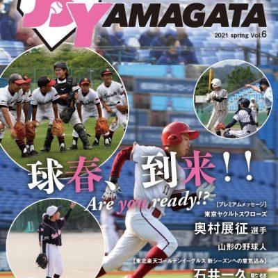 ベースボールヤマガタVOL.6表紙